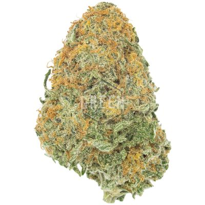 Buy Girl Scout Cookies Strain Online Green Society