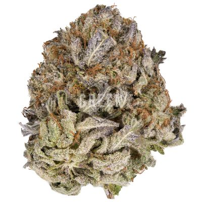 Buy Purple Kush Online Green Society