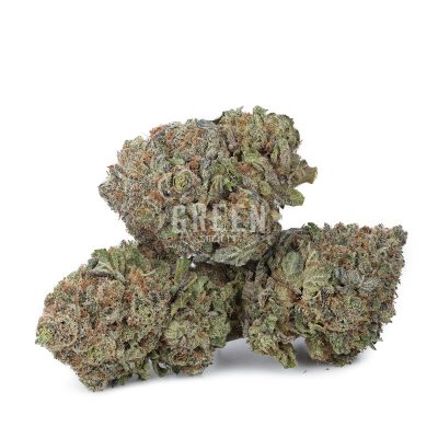 Buy Blue Crush Weed Online Green Society